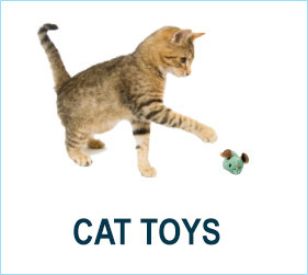 Check out our cat toys!