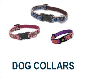 Check out our fabulous dog collars!