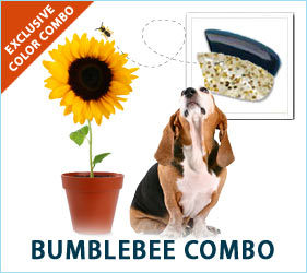 Bumble Bees buzz and so will the canine paparazzi when your dog steps out on the town in these glamorous colors.