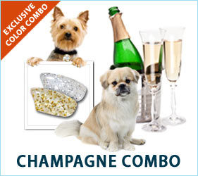 Bring in the New Year with our fabulous Champagne combo for dogs!