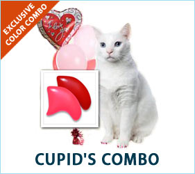 "Red and pink: for the kitty that said, ""Be mine"" and stole your heart!"