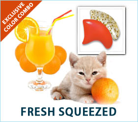 Summertime is here, and it can't last long enough. Your cat will help extend the season by looking refreshed and relaxed in our Fresh Squeezed Combo.