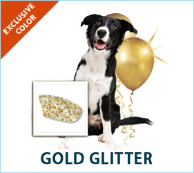 Glits out with Gold Glitter combo for dogs!