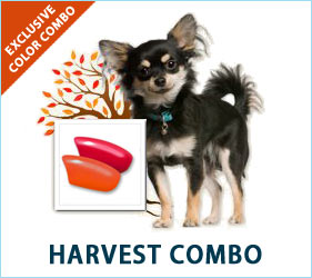 Our dogs add bounty to our lives every day, and our Harvest Combo nail caps will reflect the colors and feelings of the season.