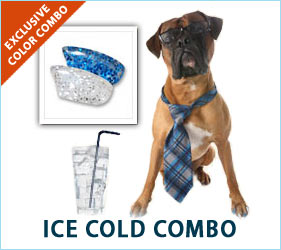 A nice tall, cold drink is a special summertime treat. Your dog will look as relaxed and cool as your favorite summer beverage wearing our Ice Cold Combo.