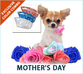 "Your canine kid will be ready to say ""Happy Mother's Day"" with this sparkly nail cap combo."