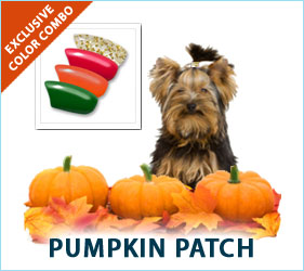 Check out our Pumpkin Patch combo for dogs!
