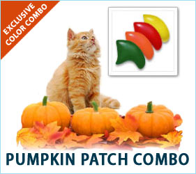 Going to the pumpkin patch is a treat for all of our senses. With our Pumpkin Patch nail cap combo, you can enjoy the joyful feelings of the patch whenever your kitty prances through the room.