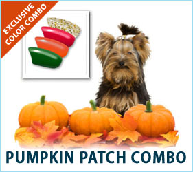 Inspired by the lovely colors of the patch, these nail caps will put a smile on the face of anyone who loves spending crisp fall days searching out the perfect pumpkin.