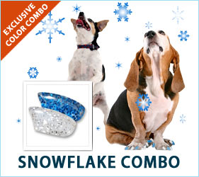 Snowflakes, snowmen, hot chocolate, and cozy snow days; lovely memories of lovely times. Get cozy with your pup on the couch, and enjoy the feeling of a snow day, even if the weather outside isn't cooperating.