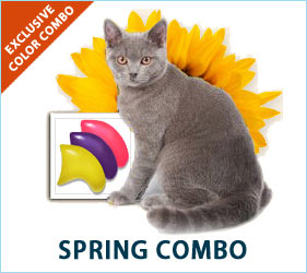 Put a spring in their step with the spring combo for cats!