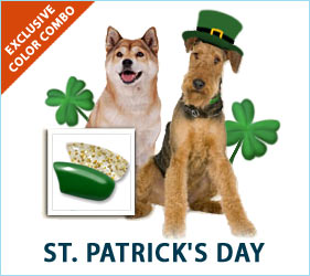 Celebrate with our fabulous St. Patrick's Day combo for dogs!