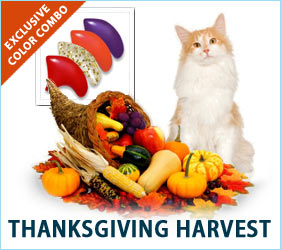 Let's all five thanks that our furniture is safe with Soft Paws Thanksgiving Combo