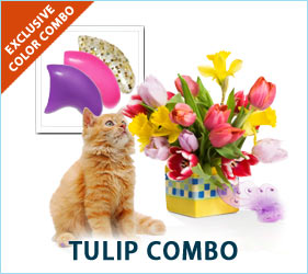 Bask in the vibrant colors of spring when your cat prances around in our exclusive tulip combo.