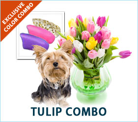 Your pup will be ready to spring into the season wearing the fresh floral colors of our Tulip Combo for dogs.