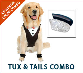 Dress to impress with the Tux & Tails combo for dogs!