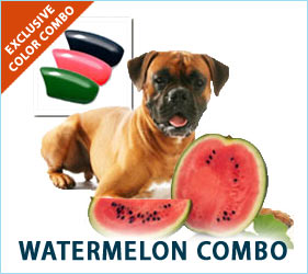 Refreshing, crisp, and cool. Your dog's nail caps will reflect the joys of summertime watermelon.
