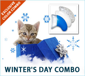 Stay cool this winter with Winter's Day combo for cats!