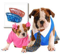 Pink Glitter & Blue Glitter Nail Cap Combo
