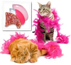 Pink Passion nail cap combo