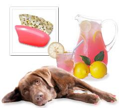 Pink Lemonade Nail Cap Combination