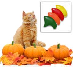 Pumpkin Patch nail cap combo