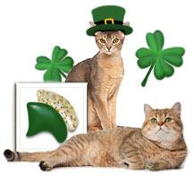 St. Patrick's Day nail cap combo