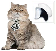 Tux & Tails nail cap combo