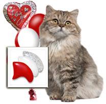 Valentine's Day Delight nail cap combo