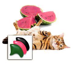 Watermelon nail cap combo